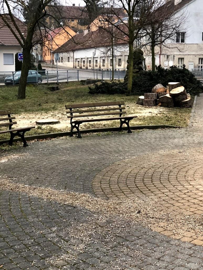 revitalizace parků