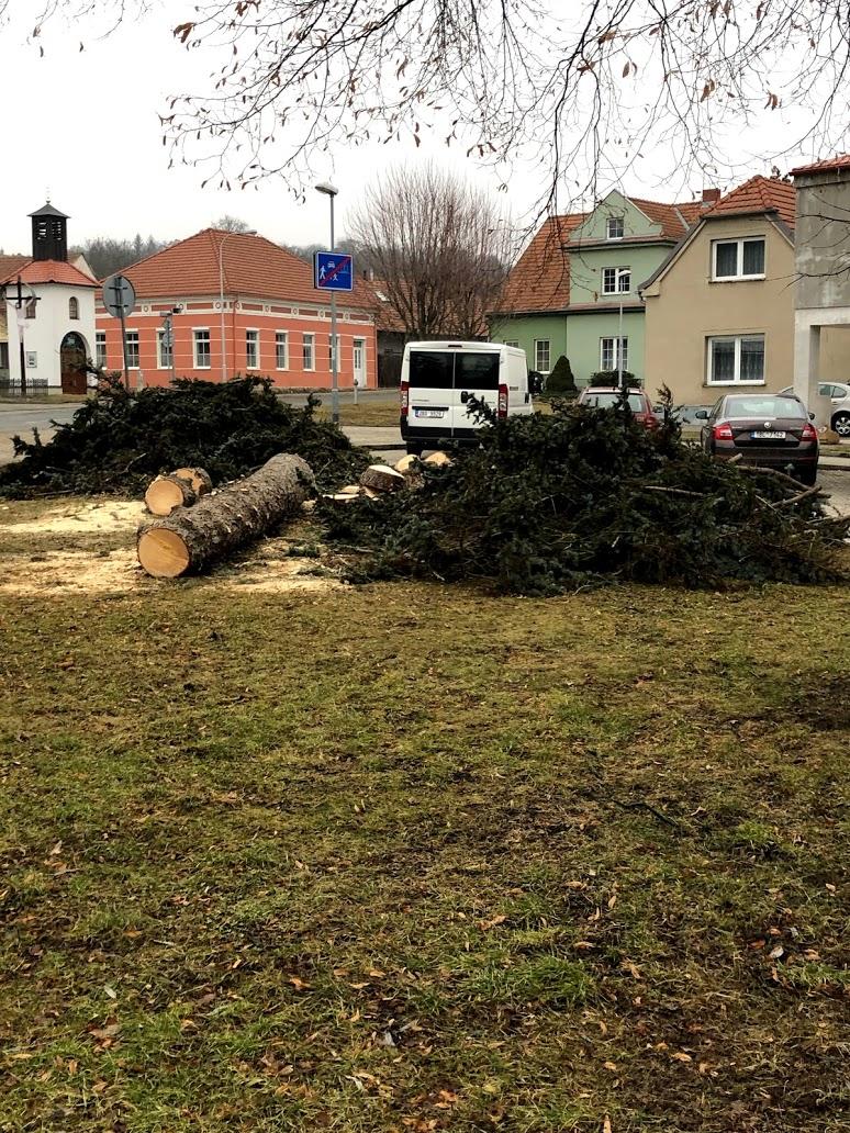 revitalizace parků2
